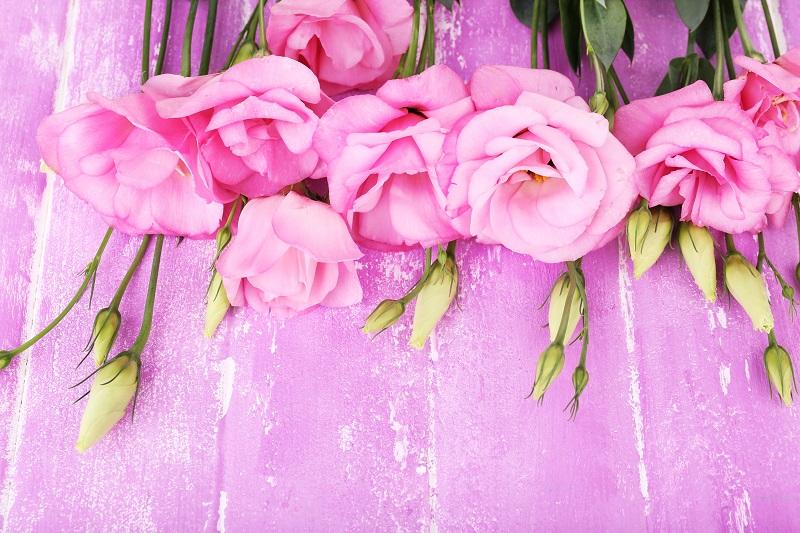 flowers 115