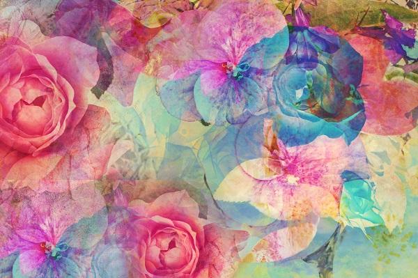 flowers 116