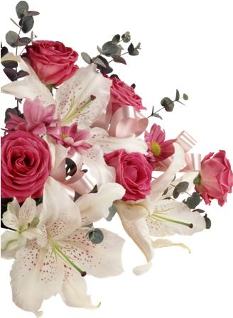 flowers 162