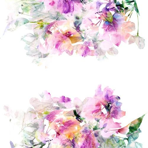 flowers 213