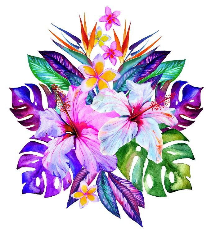 flowers 211
