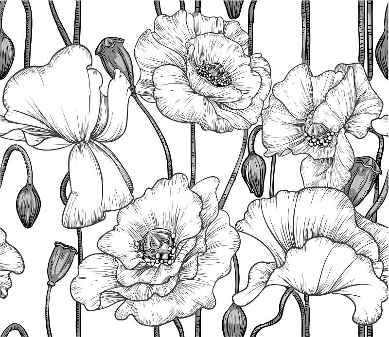 flowers 224