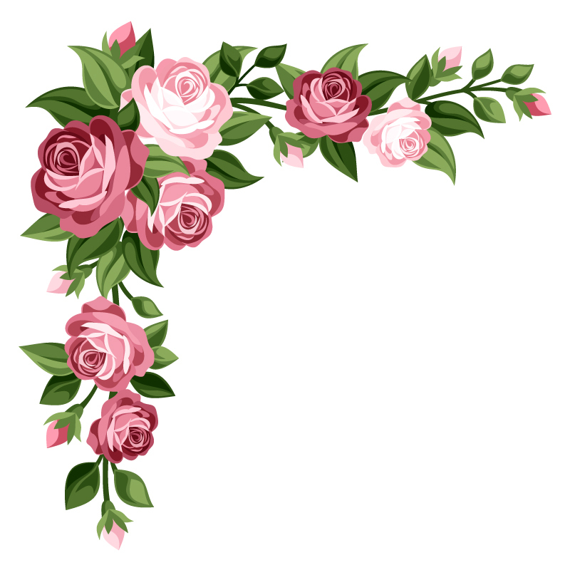 flowers 227