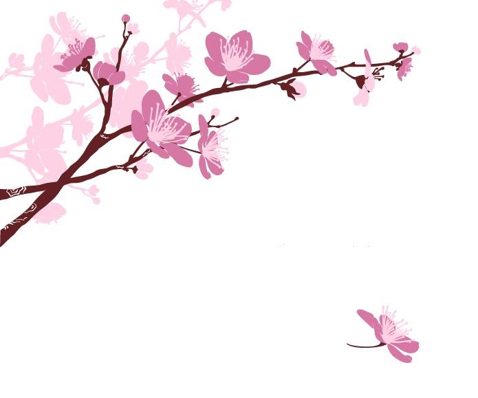 flowers 273