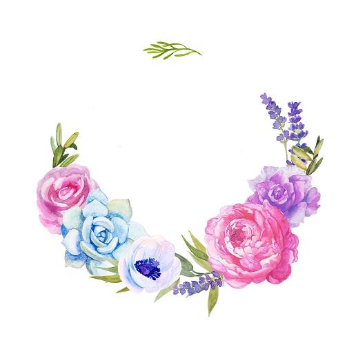 flowers 278