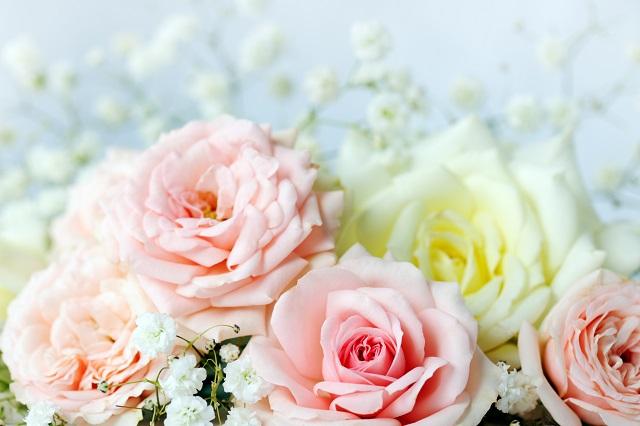 flowers 322
