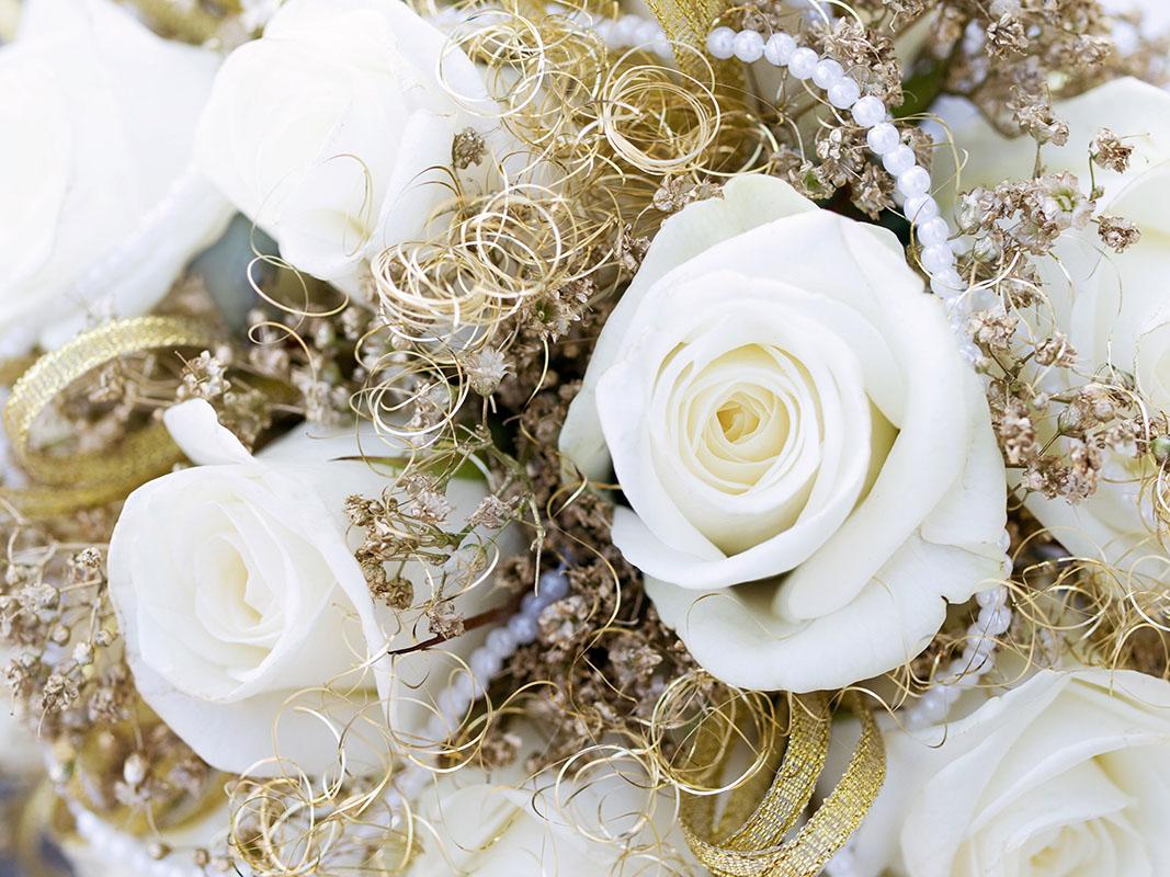 flowers 376