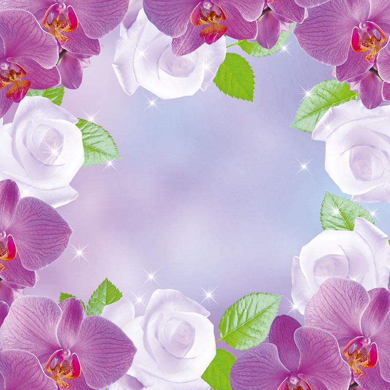 flowers 380