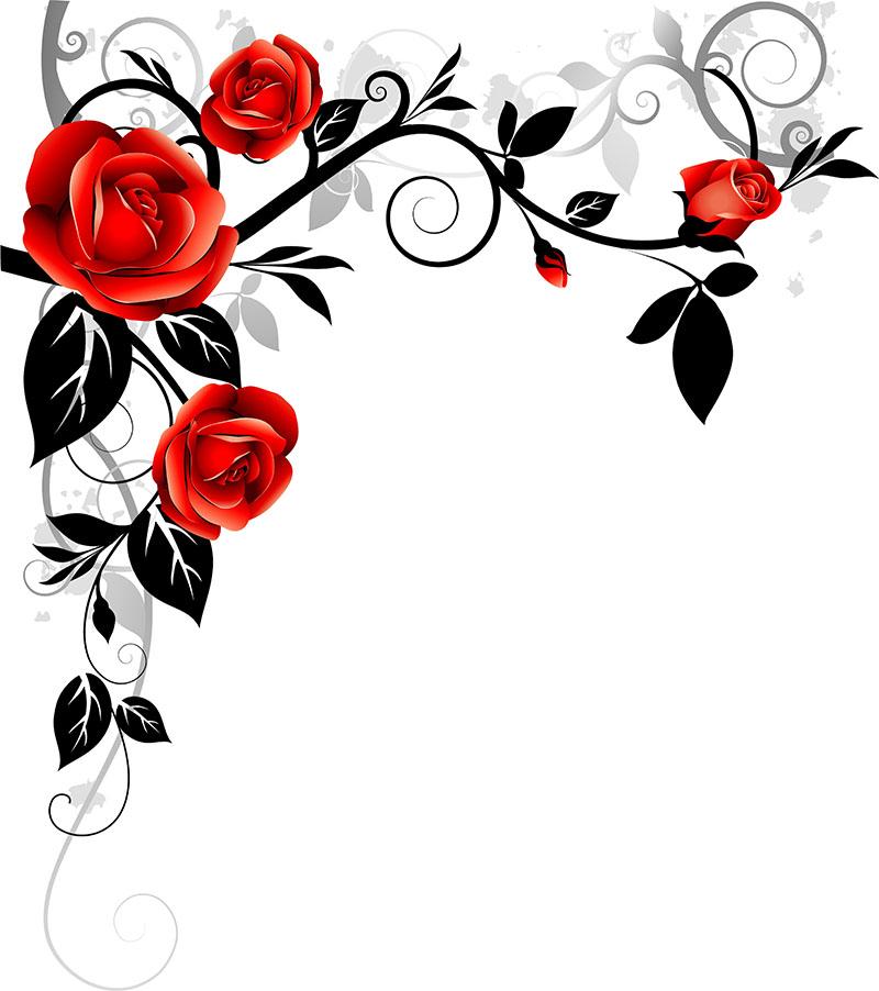 flowers 383