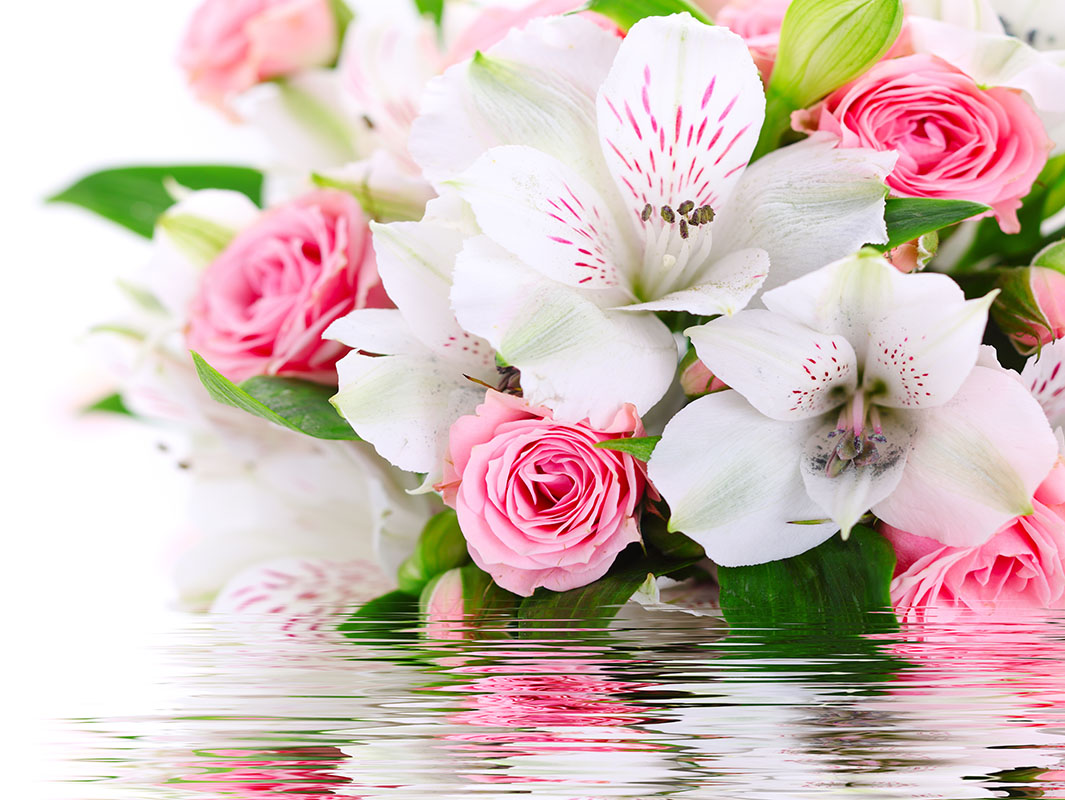 flowers 415