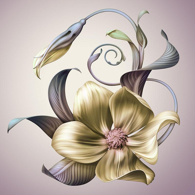 flowers 427