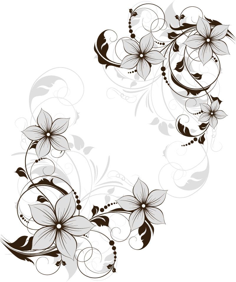 flowers 431