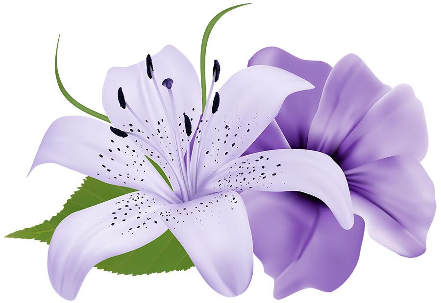 flowers 439