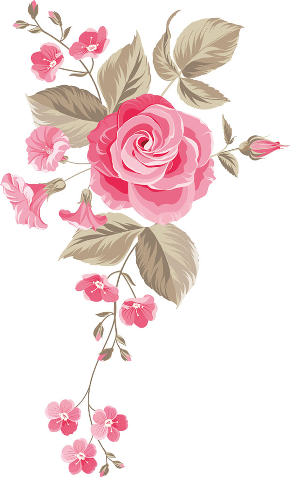 flowers 455
