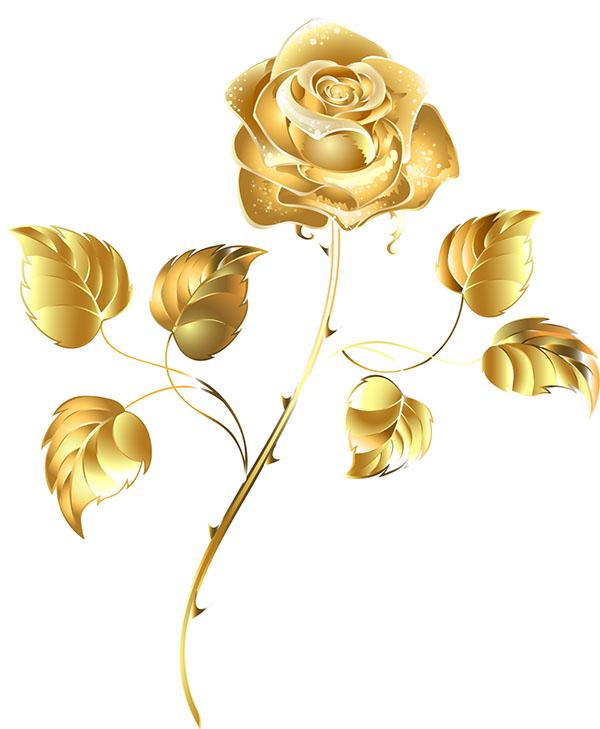 flowers 456