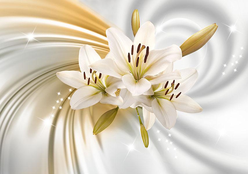 flowers 457