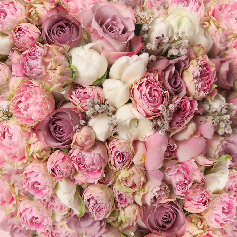 flowers 460