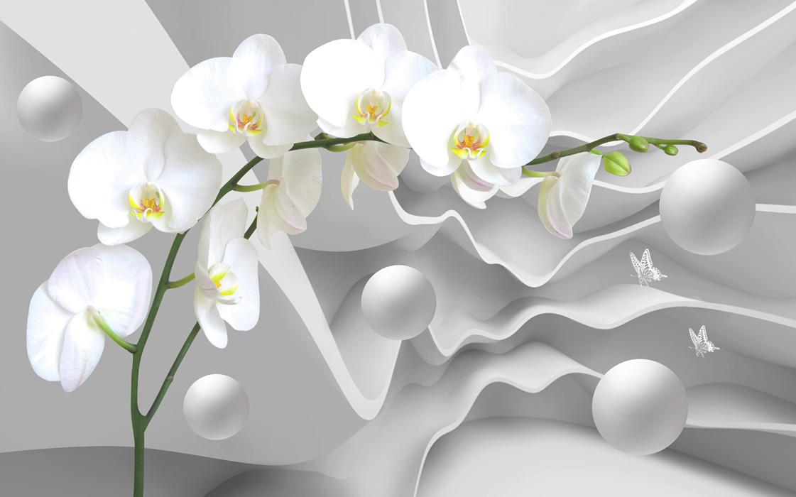 flowers 477