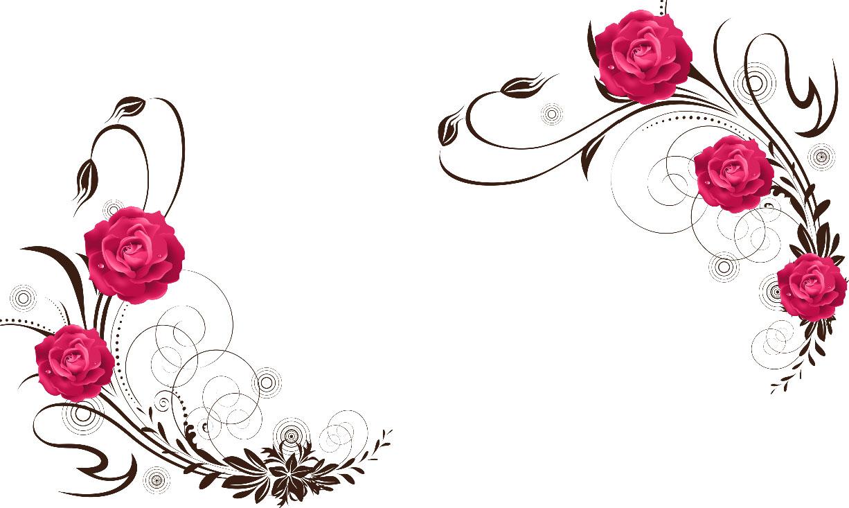 flowers 478b