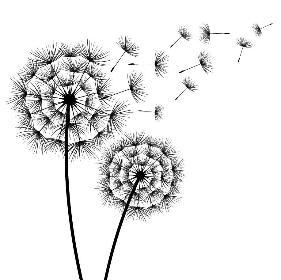 flowers 528