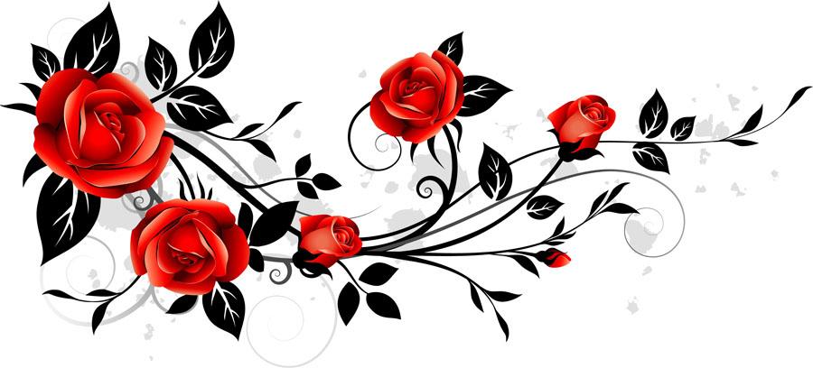 flowers 551