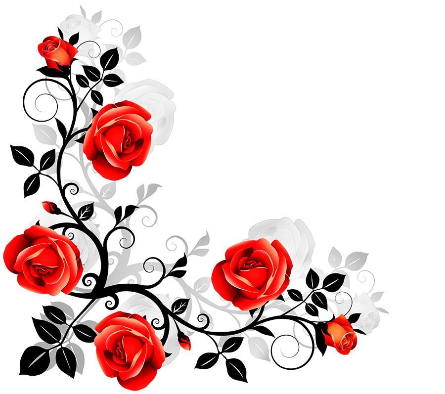 flowers 552