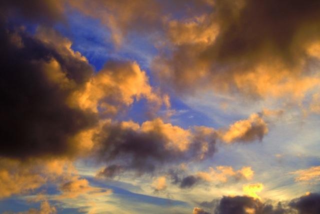 sky 194