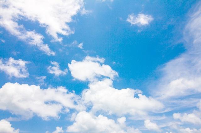 sky 198