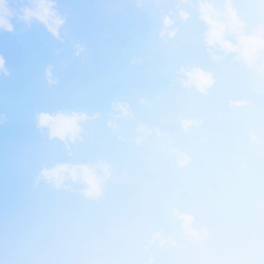 sky 310