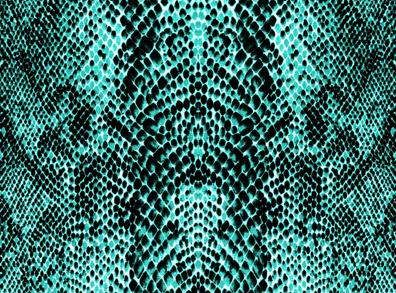 texture 042