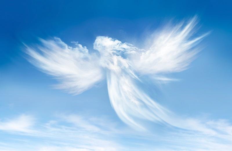 angels 004
