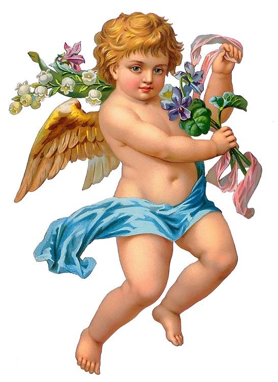 angels 026