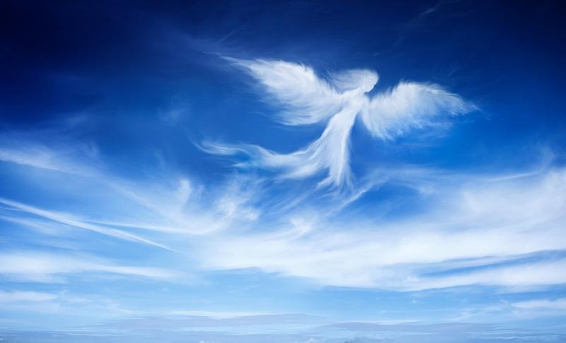 angels 039