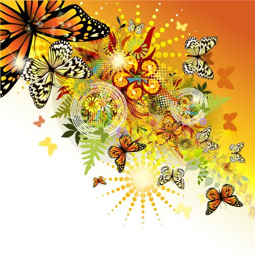 butterfly 031