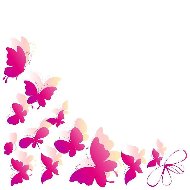 butterfly 035
