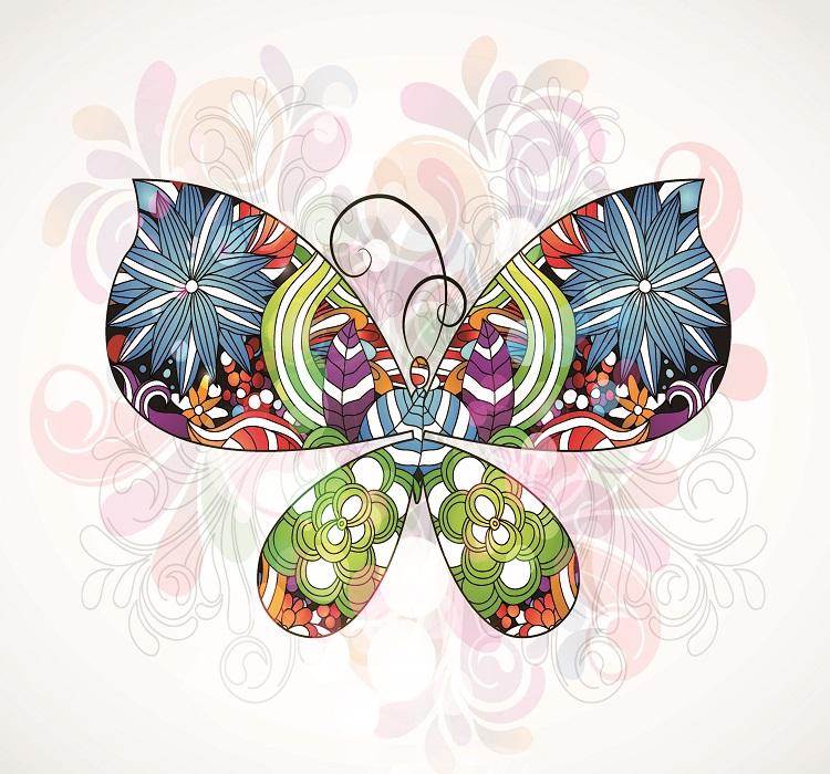 butterfly 081