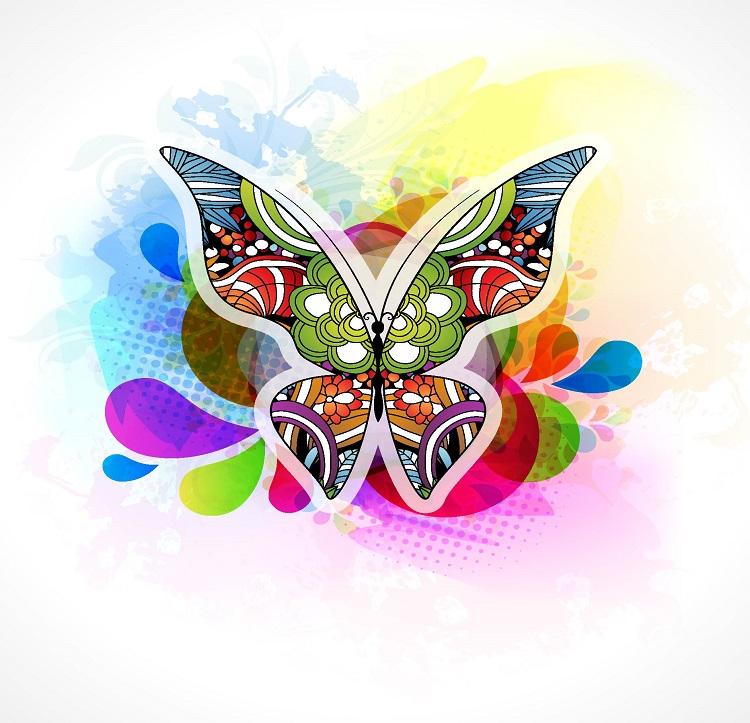butterfly 084
