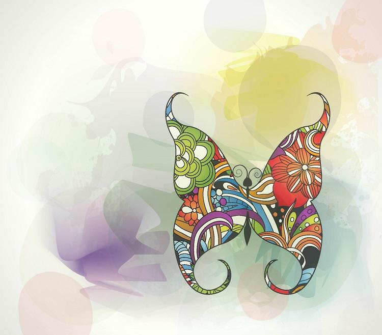 butterfly 085