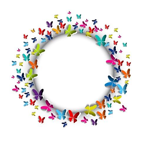 butterfly 090