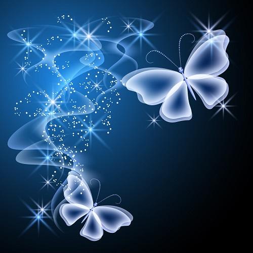 butterfly 093