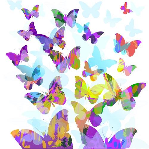 butterfly 127