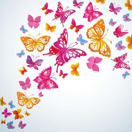 butterfly 130