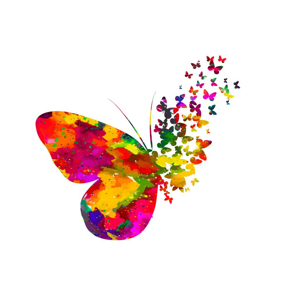 butterfly 132