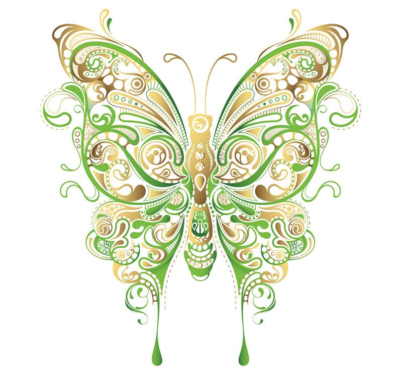 butterfly 137