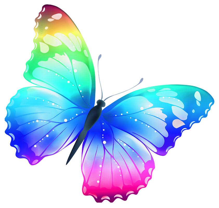 butterfly 140