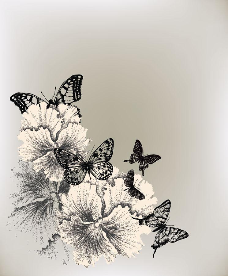 butterfly 143