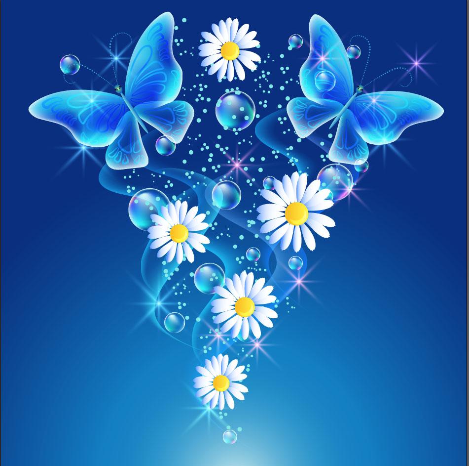 butterfly 144