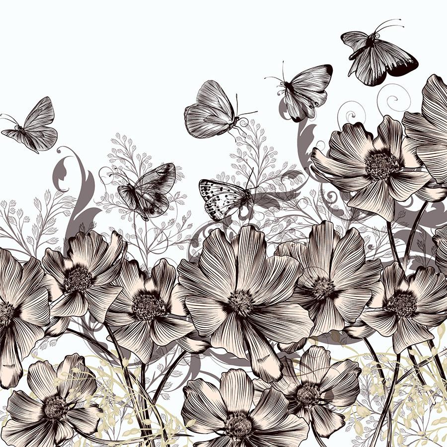 butterfly 146