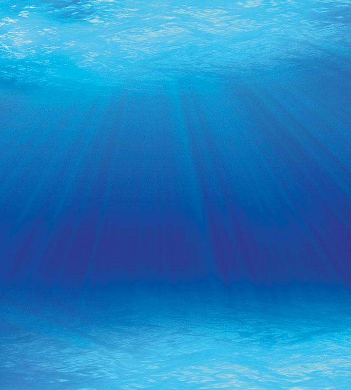 sea 107